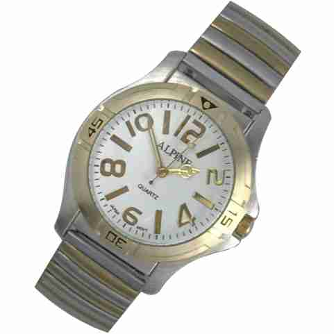 Mens Band Watch - Bold 2-Tone Silver/Gold Expansion